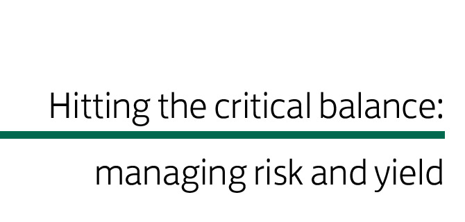 Hitting the critical balance: managing risk and yield