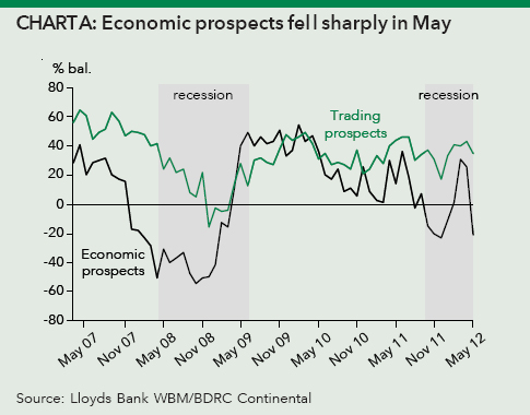 Economic prospects fell sharply in May